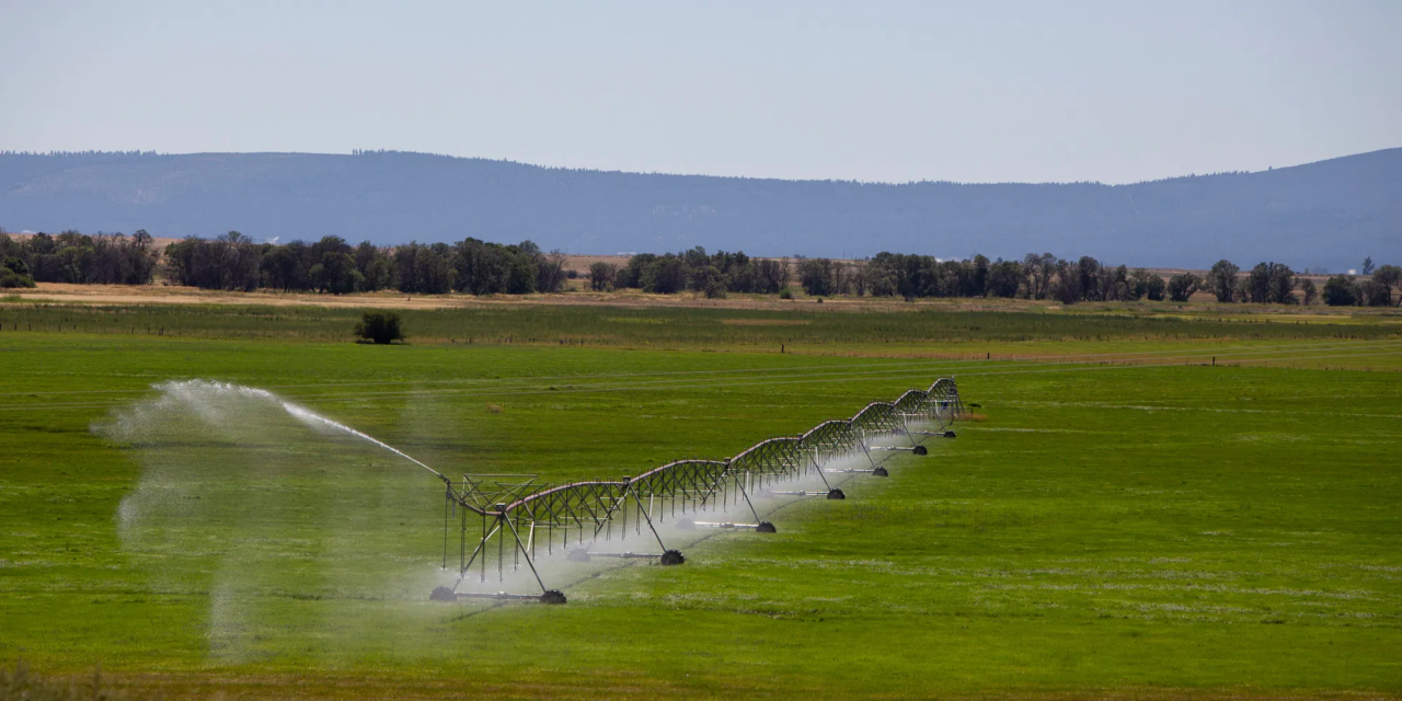 5 things you need to know about federal drought aid in California