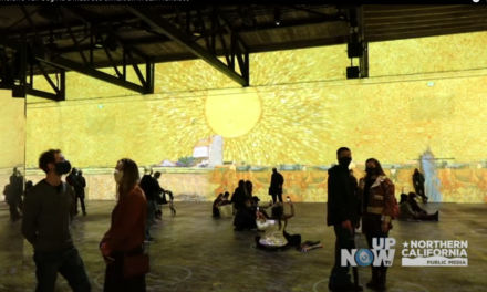 Immersive Van Gogh is a must see exhibition in San Francisco