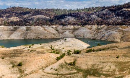 Enfrentando una 'escasez de agua', California prohíbe el bombeo en Delta