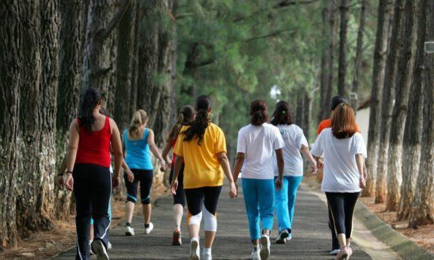A importância da caminhada diária